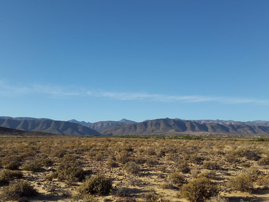 Prince Albert landscape